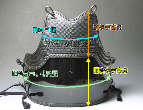 胴サイズの寸法図